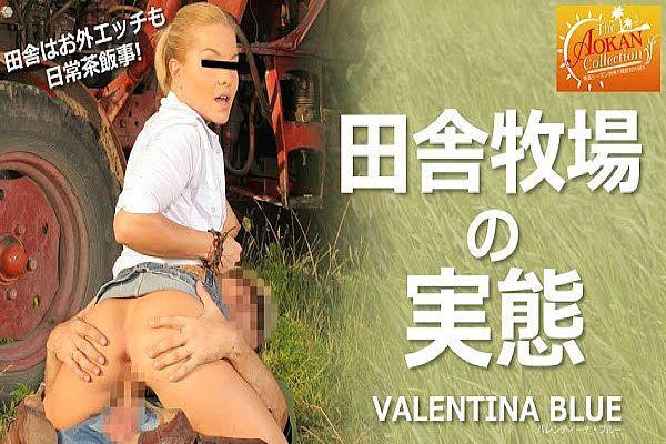 田舎牧场の実态 The AOKAN Collection Valantina Blue / バレンティーナ