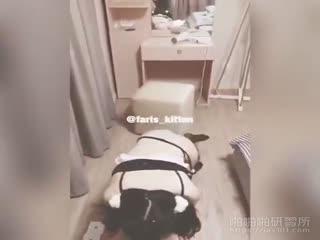 [调教系列] 女仆的犬奴调教~贱狗!!舔我的袜子吧!!
