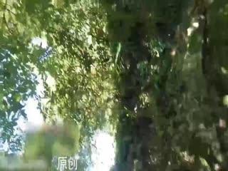 冷S猫奴小树林露出自慰喷尿自虐3