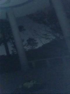 小可爱平台(原卡哇伊)风骚御姐户外小骚货1108大半夜勾搭打炮直接户外口-交啪啪十分淫荡