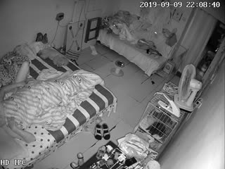九月新流出破解家庭网络摄像头奇芭的小两口和几个小狗共住一个房间这的味道肯定很重
